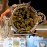 Cannabis reform: Senators say they will push pot bill in 2021