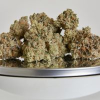 How many ounces are in a pound of weed?   Weedmaps