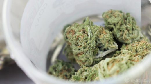 Colorado Governor Signs Bill To Double Marijuana Possession Limit And Calls  For Pardons Review | Marijuana Moment