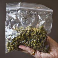 Quad-Cities prepares for legal marijuana in Illinois | | qctimes.com