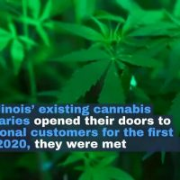 Illinois' First-Year Legal Marijuana Sales Boomed, But Challenges Remain |  St. Louis Public Radio