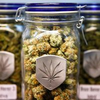 5 Charts Explaining Colorado's First Year of Legal Weed   WIRED
