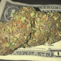 How Much Does an Eighth of Weed Weigh and What Does it Cost? All Your – Weed  Republic