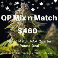 AAA Quarter Pound Mix & Match - Buy Weed Online from #1 Rated Store