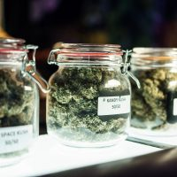 6 Things to Know Before You Even Set Foot in a Marijuana Dispensary | SELF