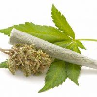 Is It Possible to Overdose on Marijuana?