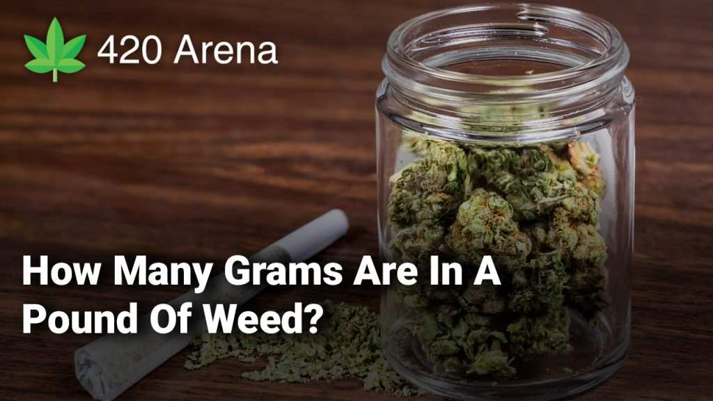 How Many Grams Are In A Pound Of Weed? - 420 Arena