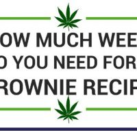 How Much Cannabis Do You Need for a Brownie Recipe?   Chronic Therapy