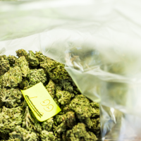 How Much Does A Pound Of Weed Cost? | 420DC