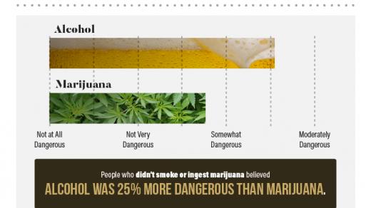 Americans' Perceptions of Alcohol vs. Marijuana