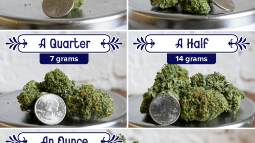 How Many Grams Are In An Ounce Of Marijuana? - Wikileaf