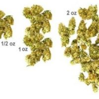 Recognize Marijuana Grams, Eighths, Quarters, Halves and more - ILGM