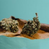 What Is a Blunt? What to Know About Rolling Up