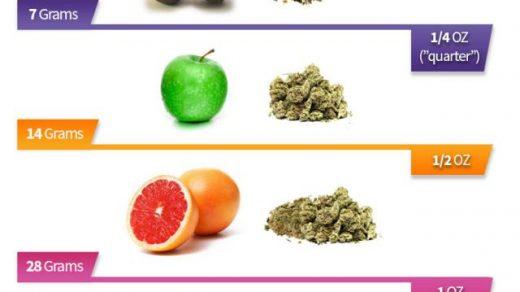 Confusing cannabis amounts: grams, quarters, dimes and ounces -  Cannaconnection.com