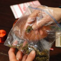 How much weed can I carry in California? Rules, regulations and more