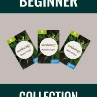 Beginner Collection Auto Feminised Seeds