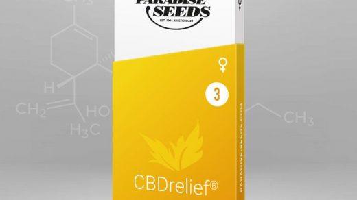 Relief CBD Feminised Seeds (CBDrelief™)