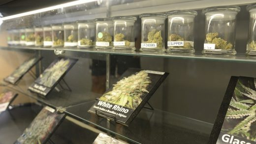 Denver's Weed Is Cheap Compared to Most Cities: Do Consumers Appreciate It?  | Westword