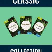 Classic Collection Auto Feminised Seeds