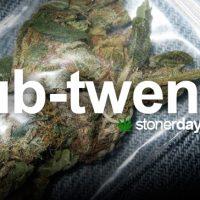 Marijuana Blog | Stoner Blog For Stoners by Stoners | StonerDays