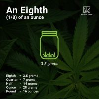 How Many Grams Are in An Ounce of Weed? Here Is Your Guide to Weed  Measurements