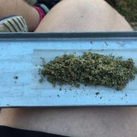 Is that to much weed for one joint or just enough?: weed