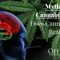 Myths About Cannabis: Does Cannabis Kill Brain Cells?