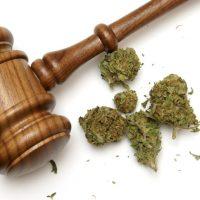 Florida Marijuana Laws - What You Need to Know // Jack Bernstein Law