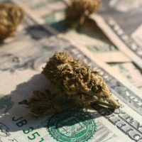 Here's How Much An Ounce of Weed Costs Around The World | High Times
