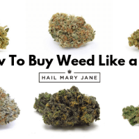 How To Buy Weed Guide: 15 Rules For New Weed Buyers - HMJ ®