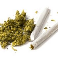 Blunts, Joints, Spliffs: What's The Difference? - Honest Marijuana