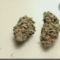 What is the street value of a g of weed? - Quora