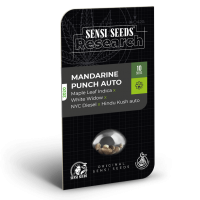 Mandarin Punch Auto Feminised Seeds