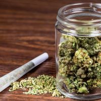 How Many Grams Are In A Pound Of Weed? - Wikileaf