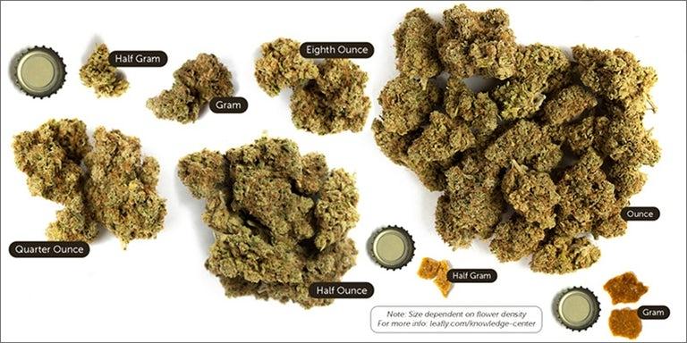 Measuring Up: The Marijuana Metric System   Herb