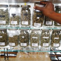 Pot dispensary license in Illinois: How to apply, how much does it cost,  more information - Chicago Sun-Times