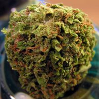 Police: California Weed Is Worth $700 Per Ounce | High Times