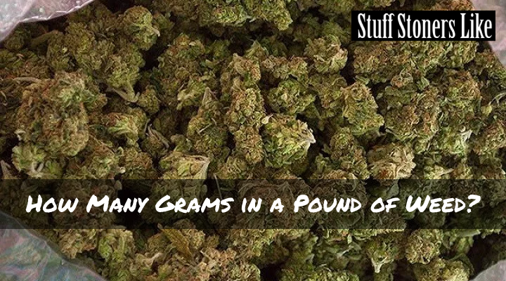 How Many Grams in a Pound of Weed?