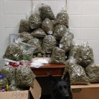 Elderly Couple Stopped In Nebraska With 60 Pounds Of Weed 'For Christmas  Presents' : The Two-Way : NPR
