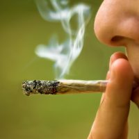 What Happens to Your Body When You Smoke Weed, Says Science   Eat This Not  That