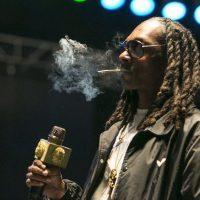 Snoop Dogg to headline Illinois State Fair—will he be able to smoke  marijuana on stage? - Chicago Sun-Times