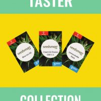 Taster Collection Feminised Seeds
