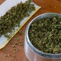 Curious About How Much Weed Is In The Average Joint? - VIX
