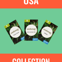 USA Collection Auto Feminised Seeds