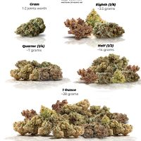 Weed Measurements: Weights Chart, Prices and Tips   Dutch Passion