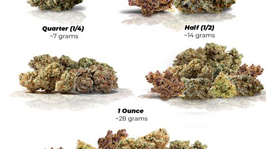 Weed Measurements: Weights Chart, Prices and Tips | Dutch Passion