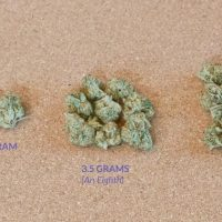 🥦How Many Grams in an Ounce, Quarter, or Eighth of Weed? A Visual Guide –  Production Grower