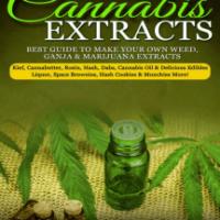 Lea DIY Cannabis Extracts de Saul Silver en línea   Libros