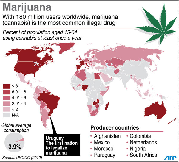 Uruguay becomes first country to legalise marijuana trade - News - China  Daily Asia