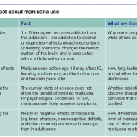 Cannabis Use in Young Adults: Challenges During the Transition to Adulthood
